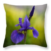 Delicate Japanese Iris Throw Pillow