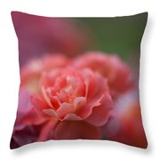 Delicate Layers Of Light Throw Pillow