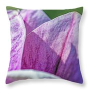 Delicate Nature Throw Pillow