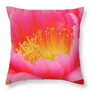 Delicate Pink Cactus Flower Throw Pillow