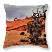 Delicate Strength Throw Pillow