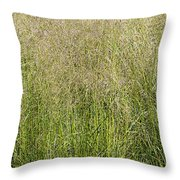 Delicate Tall Grasses Throw Pillow