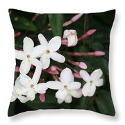 Delicate White Jasmine Blossom With Green Background  Throw Pillow