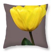 Delicate Yellow Throw Pillow