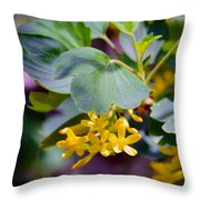 Delicate Yellow Flowers Throw Pillow