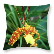 Delicate Yellow Spider Orchid Throw Pillow
