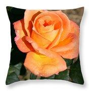 Delightful Throw Pillow