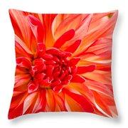 Delightful Dahlia Throw Pillow