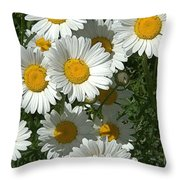 Delightful Daisies Throw Pillow