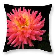 Delightful Dali Throw Pillow