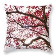 Delightful Fall Throw Pillow