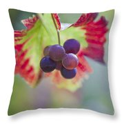 Delightful Moment Throw Pillow