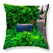 Deliver The Mail Throw Pillow