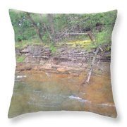 Dells Creekside Throw Pillow