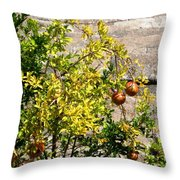 Delphi Pomegranate Throw Pillow