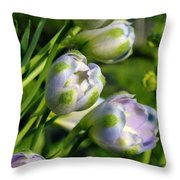 Delphinium Buds Blooming Throw Pillow
