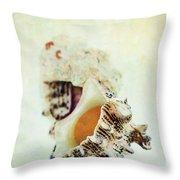 Delphinula Sea Shell Throw Pillow