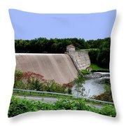 Delta Dam Throw Pillow