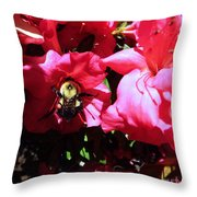 Delving Into Sweetness Throw Pillow