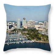 Demens Landing St Petersburg Throw Pillow