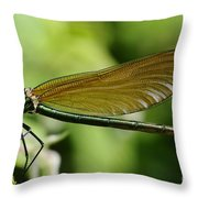 Demoiselle Throw Pillow by Jenny Potter