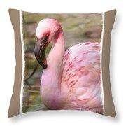Demure Flamingo - Digital Art Throw Pillow