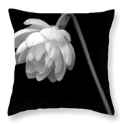 Demure Lotus Throw Pillow