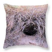 Den In Death Valley Throw Pillow