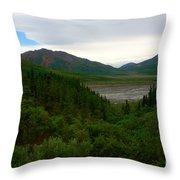 Denali National Park 2 Throw Pillow