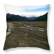 Denali National Park 3 Throw Pillow