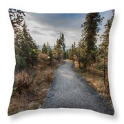 Denali Path Throw Pillow