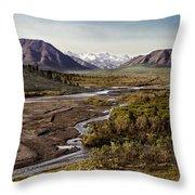 Denali Toklat River Throw Pillow