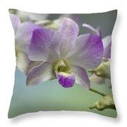 Dendrobium  6398 Throw Pillow