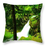 Denny Camp Falls  Throw Pillow