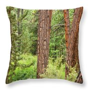 Dense Forest View Throw Pillow