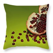 Departed Throw Pillow by Evelina Kremsdorf