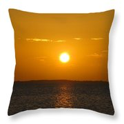 Departing Throw Pillow by Michael Anthony