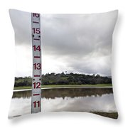 Depth Measuring Stick Lake Lagunita Stanford University Throw Pillow