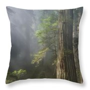 Depth Of Forest Throw Pillow