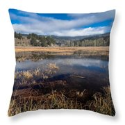 Depths Of Dry Lagoon Throw Pillow