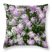 Descanso Gardens 10 Throw Pillow