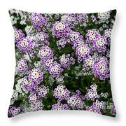 Descanso Gardens 11 Throw Pillow
