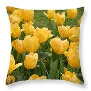 Descanso Gardens 12 Throw Pillow