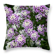 Descanso Gardens 8 Throw Pillow