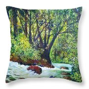 Descenso Turbulento Throw Pillow