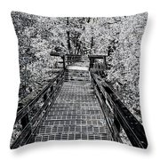 Descent Into The Wilderness Throw Pillow