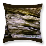 Desert Boulder Detail Throw Pillow