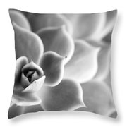 Desert Center Throw Pillow