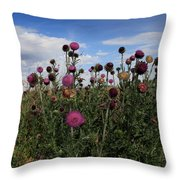 Desert Colors Throw Pillow