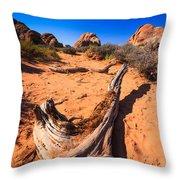 Desert Driftwood Throw Pillow